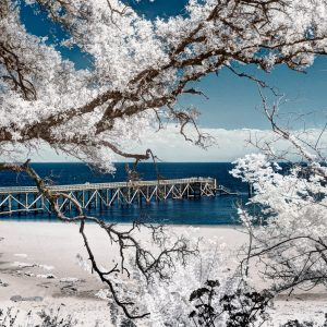 photographie-infrarouge-infrared-yann-philippe-photographe-21